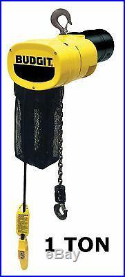 Cmco Budgit Behc Manguard Electric Chain Hoist 1 Ton Capacity, 32 Fpm