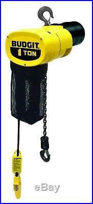 New Budgit 1-Ton Electric Chain Hoist 115 Volts