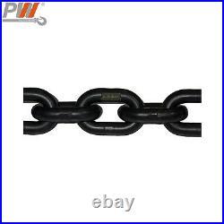 Prowinch 2 Speed 1/2 ton Electric Chain Hoist 20 ft G100 Chain M4/H3 230/380/