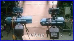 Qty 2 DKUN2-250-KV1F4 Demag Electric Chain Hoist 1/4-Ton with 20' Lift